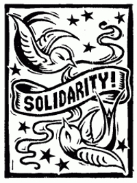 solidarity.cleaned